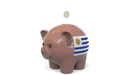 Putting money into piggy bank with flag of Uruguay. Tax system system or savings related conceptual 3D rendering