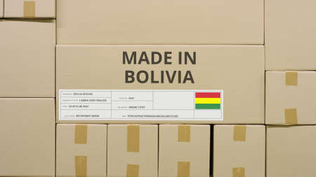 Box with printed MADE IN BOLIVIA text and flag sticker in a warehouse