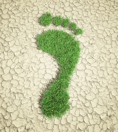 carbon footprint: Ecological footprint concept illustration - grass patch footprint