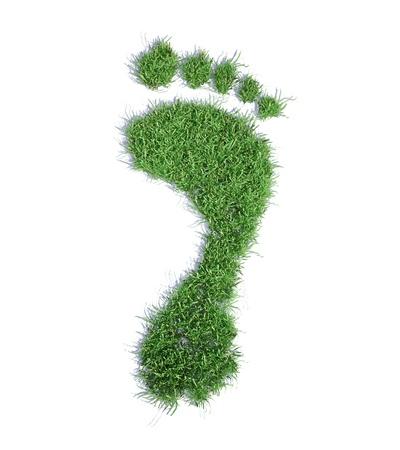 huellas pies: Concepto de huella ecol�gica ilustraci�n - hierba huella parche