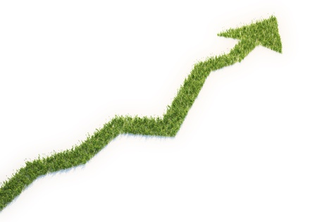 Grass patch shaped like a graph - eco business concept photo