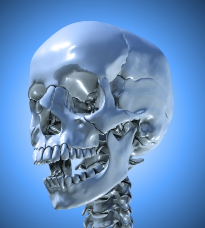 Human skull with a slightly open jaw photo