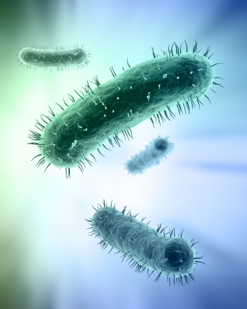 Scientific illustration of a group of bacteria