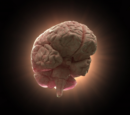 Glowing human brain on a black background - intelligence and creativity concept illustration