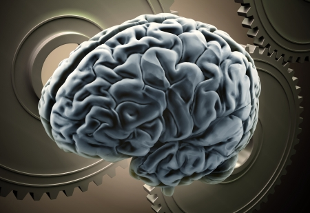 Workings of a human brain concept - brain with gears Stock Photo