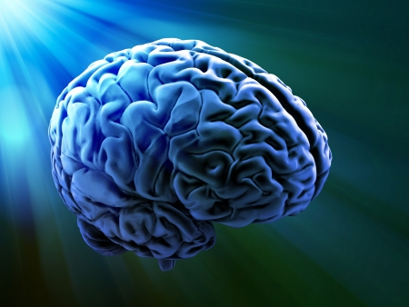 knowledge is power: Human brain abstract Stock Photo