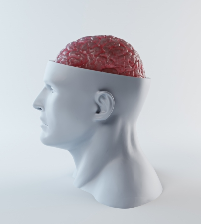 Male head abstract with a visible brain Stock Photo