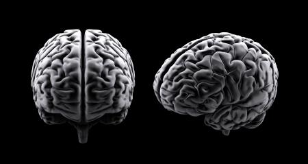 Two stylized views of a human brain