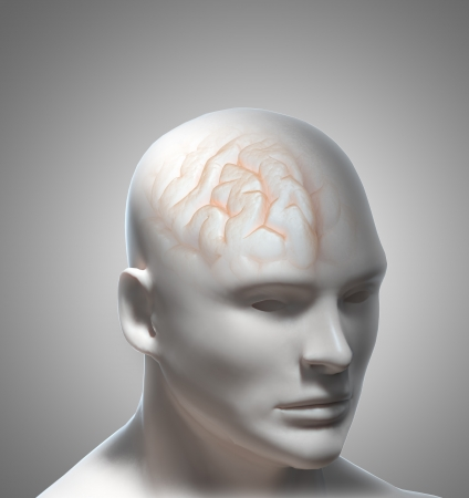 Human Intelligence or psychology concept illustration