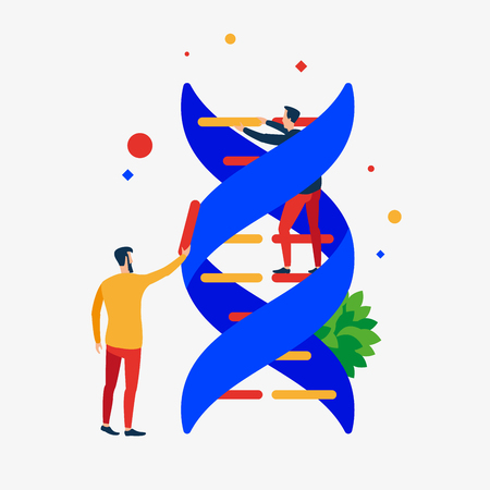 DNA correction. The repair process of the DNA helix. Vector illustration. Separate objects. Иллюстрация