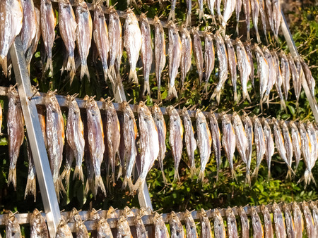 Lake Como, Italy. Typical fish named misultin dried in the sun Zdjęcie Seryjne - 35852505