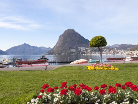 Lugano Switzerland: Garden at the lake with fresh flowers for the spring season photo