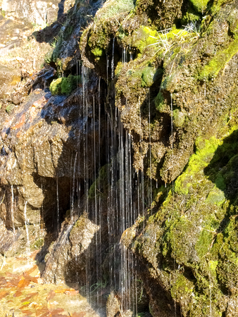 contra: Dam of Contra Verzasca Ticino, Switzerland: drops of water from the rock wall