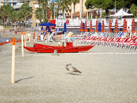 bather: San Bartolomeo, Italy - June 19, 2015: lifeboat bathers resting on the beach