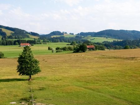 allgau: Deutschland: Allgau panorama. mountains and green meadows,