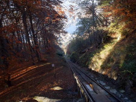 narrow gauge railroad: Lugano, Switzerland: San Salvatore funicular line between the mountain forest