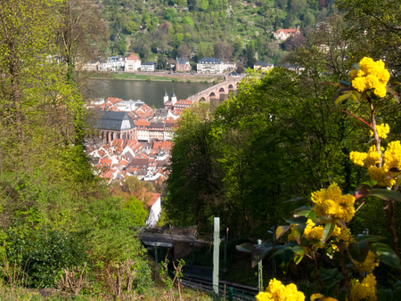 Heidelberg, Germany: City view from the Königstuhl 80 meters above the valley floor on the north side