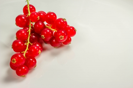 Currants photo