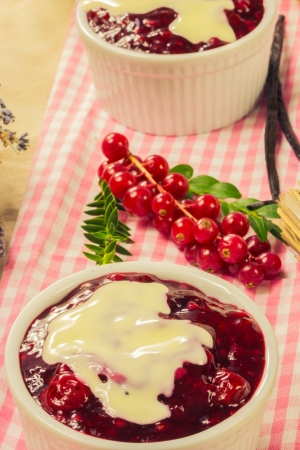Red fruit compote with custard photo