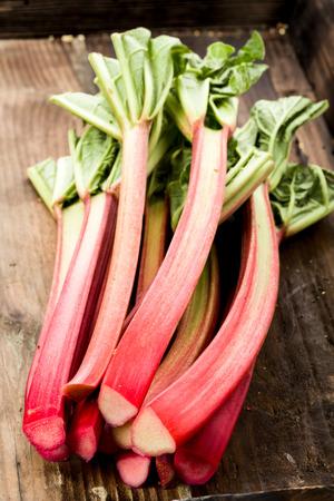 Rhubarb on Wooden underground Standard-Bild