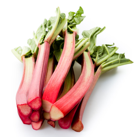 Rhubarb isolated on white underground