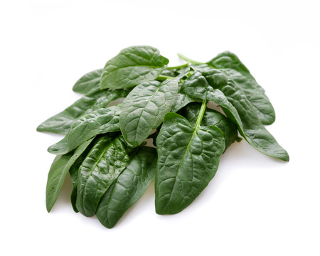 freshly picked: Freshly picked spinach on a background Stock Photo