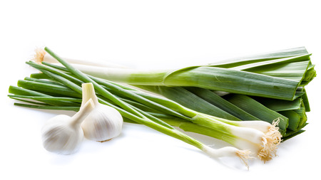 Fresh leek and garlic on a background