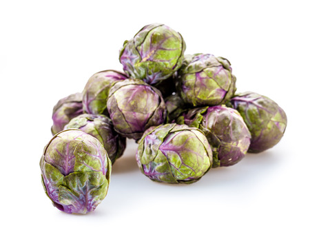 brussels sprouts: Fresh Purple Brussels sprouts on a background Stock Photo