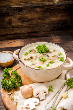 Mushroom soup with parsley and fungi