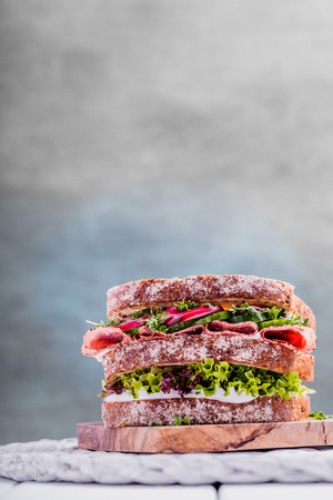 Sandwich with whole grain bread salami cress and cucumber