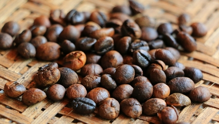 closed up: Closed up coffee Beans Arabica in Thailand Stock Photo