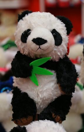 souvenir: The Panda doll show in Souvenir shop