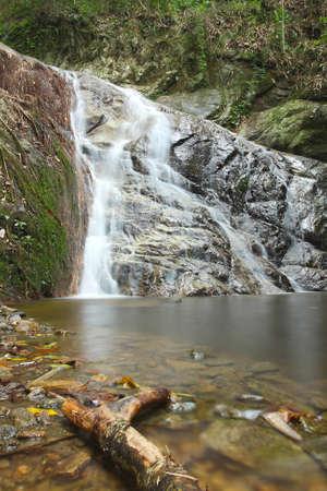 environmen: Mae-Kampong waterfall in Chiang Mai