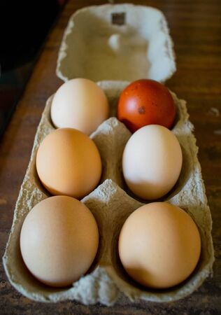 Six free range eggs in various sizes and colours on the kitchen table, one red, three white and two creamy colored eggs in a box, happy hens gives better eggs, support local farmers Stock Photo