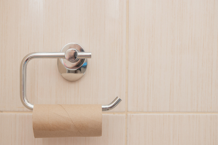 Toilet Paper Holder : Empty roll on toilet paper holder with green white wall in