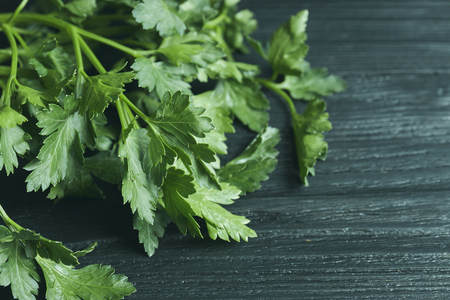 Fresh parsley closeup. On a black wooden background. Free space for text. Stock Photo