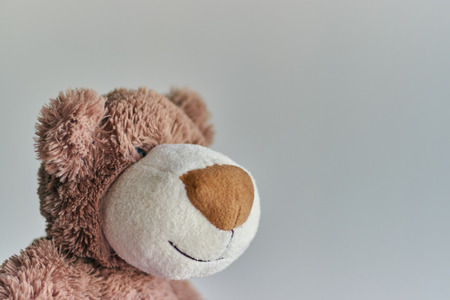 children's toy teddy bear isolated on a light background.