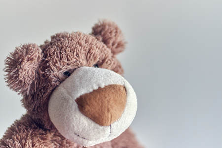 childrens toy teddy bear isolated on a light background.