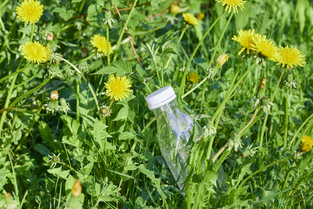 plastic bottle in green grass in the forest. environmental pollution by plastic. protection of ecology. Imagens