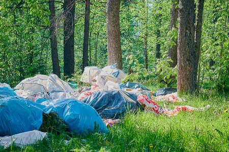 ein Haufen Müll im Wald. Schutz der Rasse. Plastikmüll. Das Konzept der Umweltprobleme