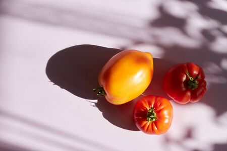 Ripe raw organic tomato on solid mustard orange background. Hard light harsh shadows. Complementary color palette. Balanced diet vegan healthy lifestyle concept.