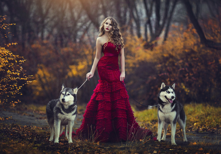 A beautiful blonde girl in a chic red dress, walking with two husky dogs in an autumn forest.