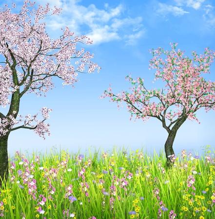 Cherry trees in spring illustration illustration