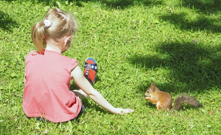 outstretched hand: Girl sitting, his legs stretched out on the grass, squirrel nibbles Nut, sitting next to a girl with outstretched hand, view from the back