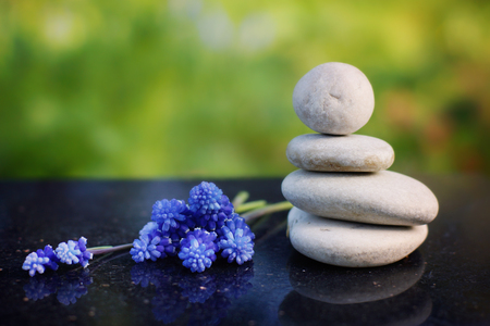 Zen composition, stones for massage and blue flowers Miskuri on a polished granite table in the summer garden