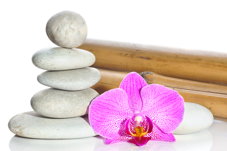 Bamboo, stones, stacked pyramid and flower of a pink orchid on a white background.