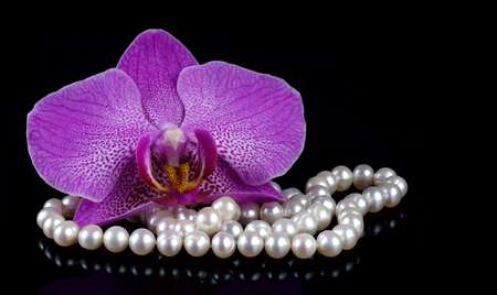 Flower of an orchid with beads made from pearls on a black background Stock Photo