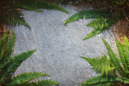 floral ornament of fern leaves on a flat stone.