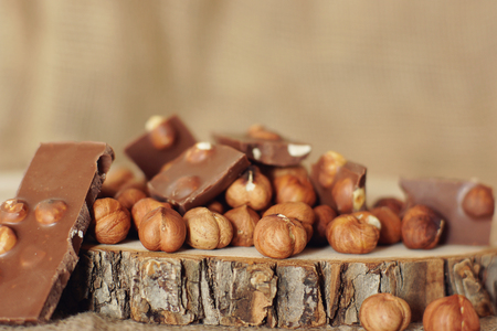 Hazelnut and chocolate on a cut of a natural tree