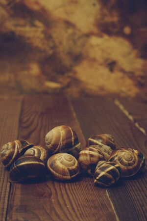 Empty shells from edible snails lie on the board against the background.